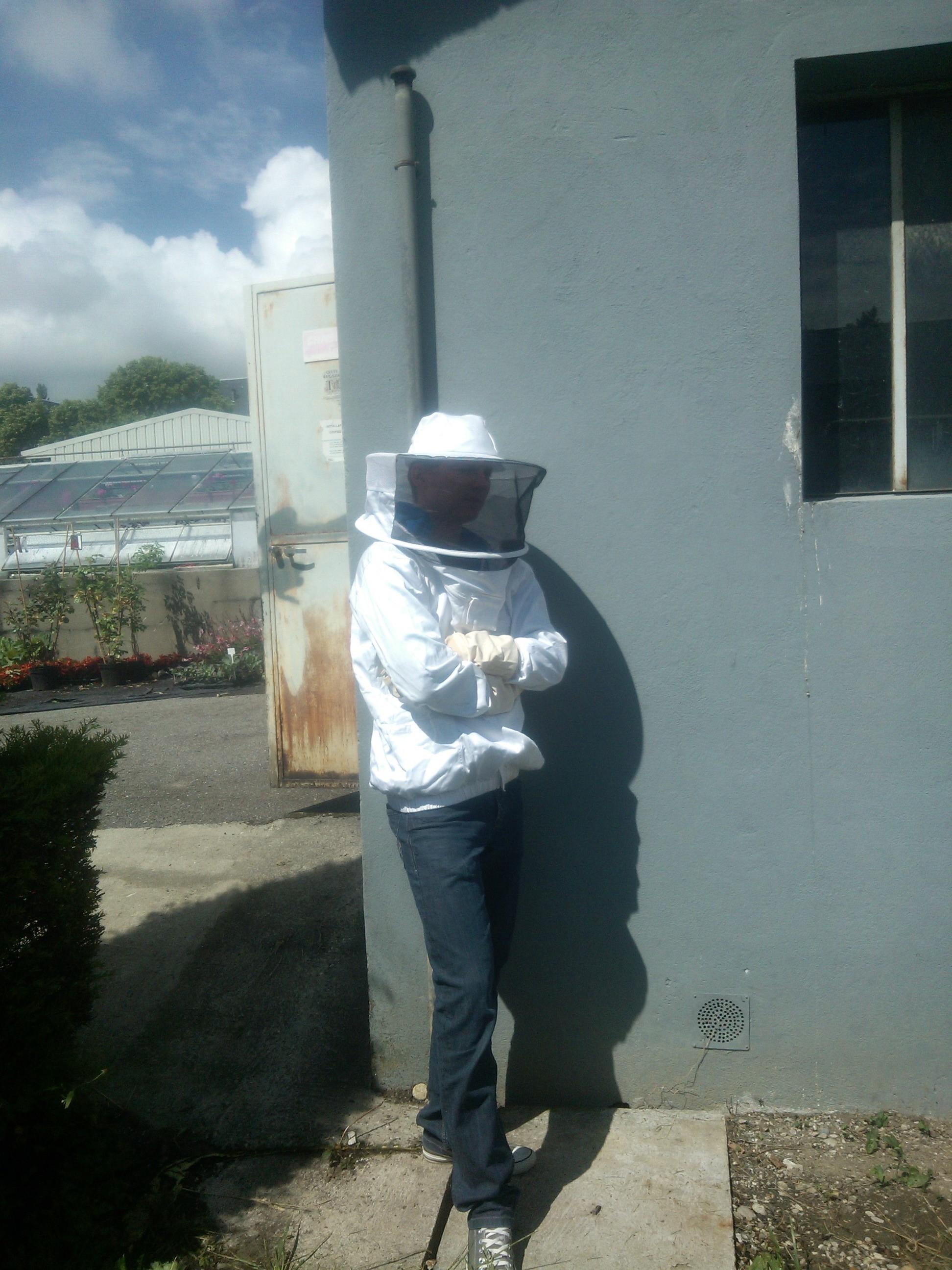 Comment se portent nos abeilles la ruche injs for Portent 2014