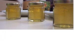 premiers pots de miel